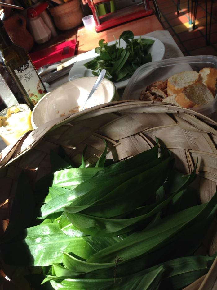 salade-ail-lyon1